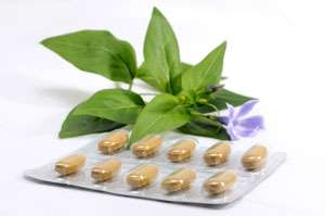 Nutritional Supplements & Botanicals